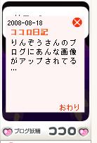 Kokoro21